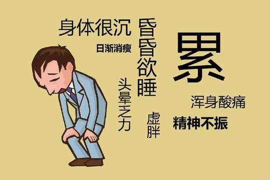 中医治疗慢性疲劳的食疗方法