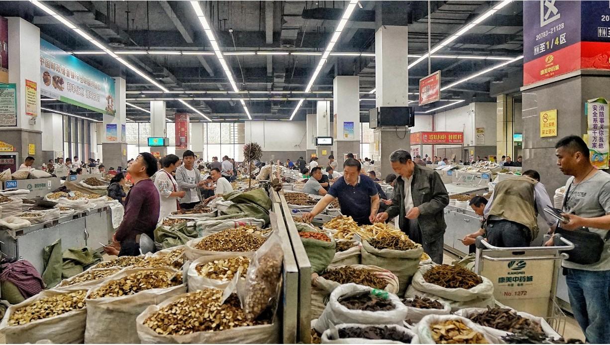 玉林中药材市场部分品种点评(2019年2月)