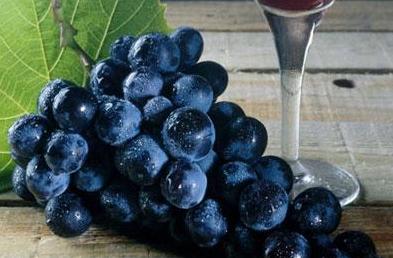 喝纯山葡萄酒的好处?