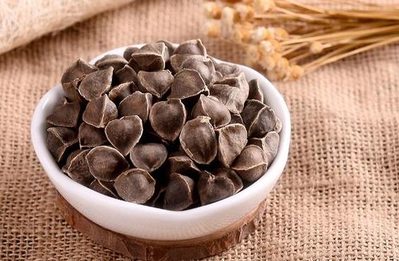 辣木籽的原产地是哪里?