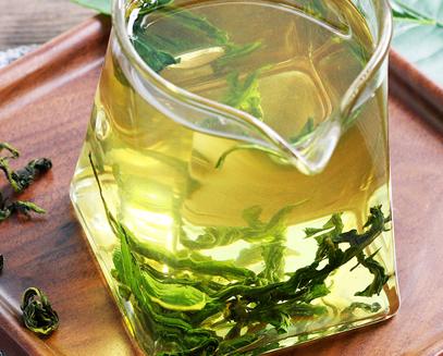 中药蒲公英茶可以天天喝吗?