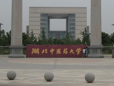湖北中医药大学开展教育扶贫,党委副书记带队!