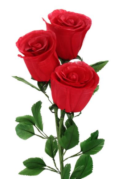 玫瑰花加黑枸杞别有一番滋味