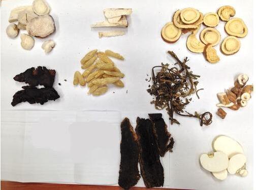 养阴清肺汤的功效与作用、组成及用量