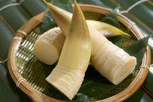 【食疗】竹笋食疗两款