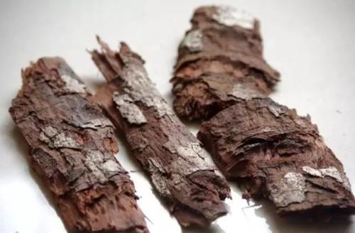 吃卡宾达树皮后心跳加速怎么回事_卡宾达树皮的副作用