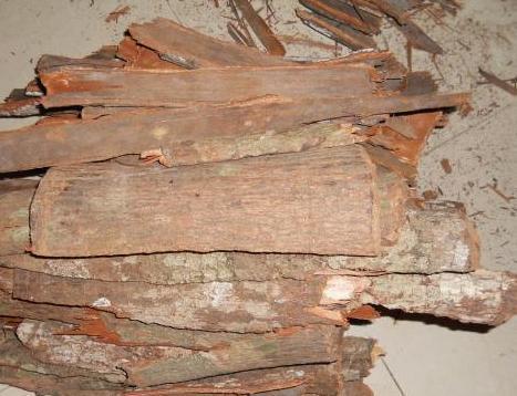 服用完卡宾达树皮后睡不着觉是什么原因_卡宾达树皮的副作用
