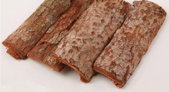 和卡宾达树皮功效一样的四种壮阳食谱_卡宾达树皮