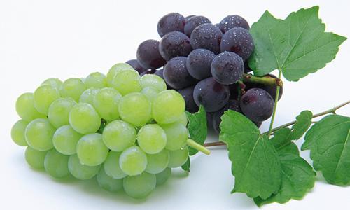 【食疗】葡萄也能食疗?你没有看错