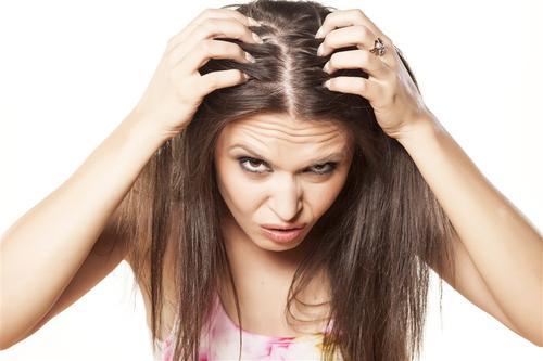 生姜可以治疗脱发吗