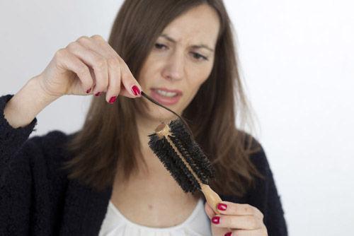 侧柏叶能治脱发吗?侧柏叶治疗脱发的偏方