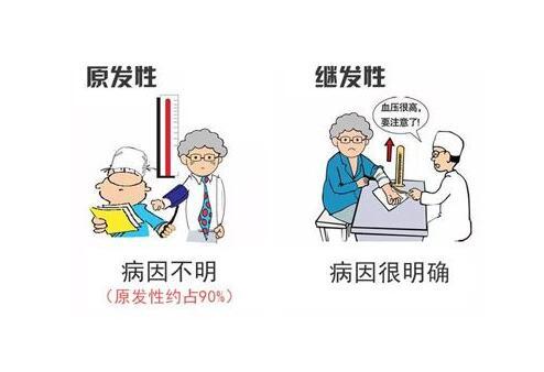 治疗高血压的偏方有哪些