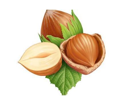 血压高的人能吃榛子吗