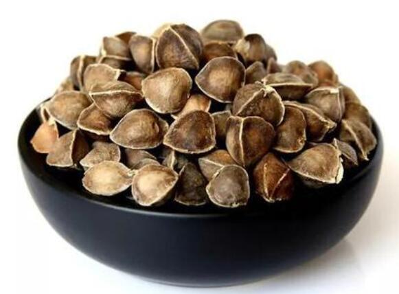 辣木籽的食用禁忌,哪些人不能吃辣木籽