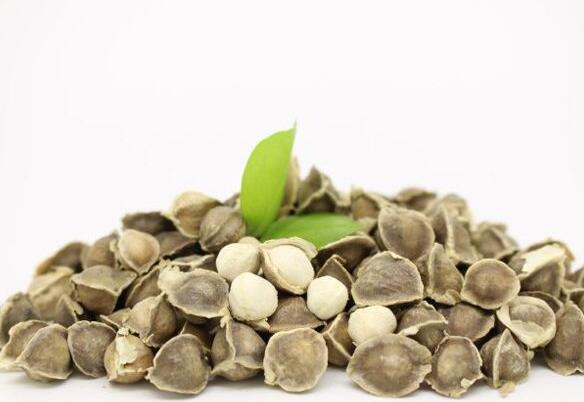 辣木籽的食用方法