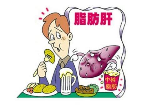 中医治疗脂肪肝的偏方