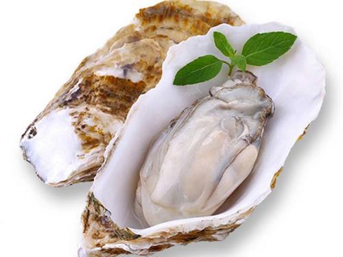 牡蛎有壮阳的功效吗