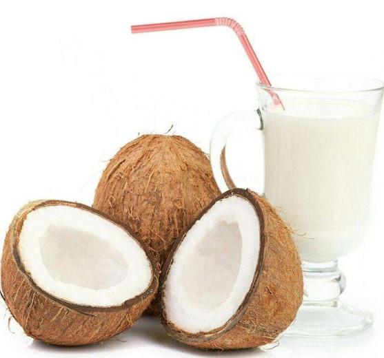 椰子的食用价值