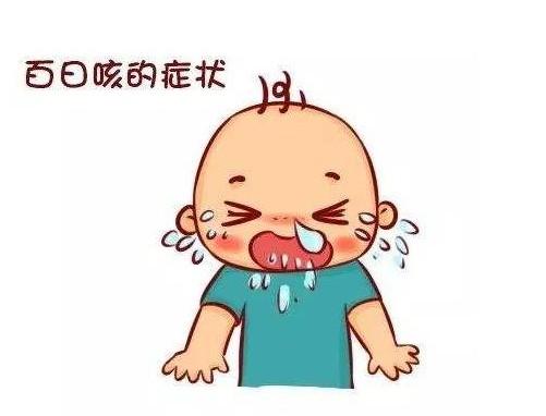 中医治疗百日咳的偏方