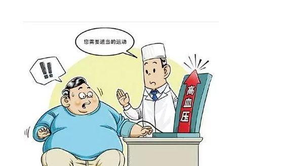 老年高血压的中医调理方法